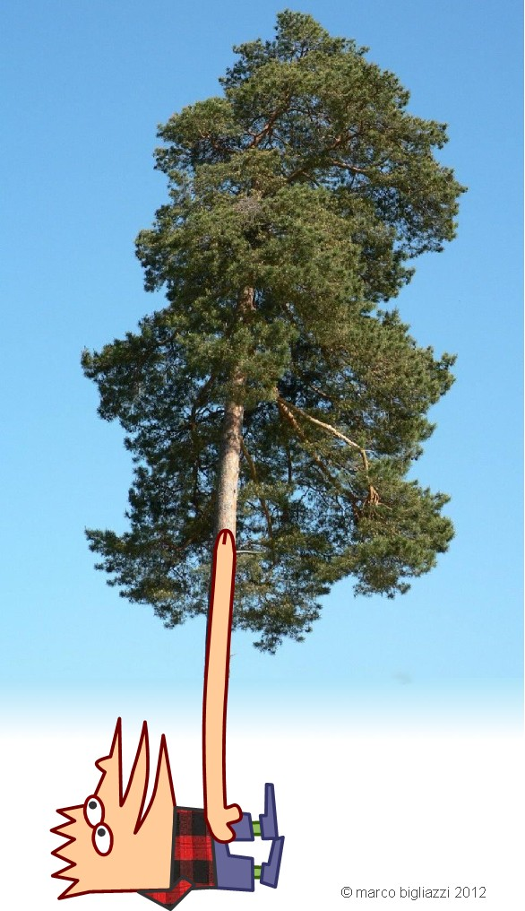 Pypys the lumberjack